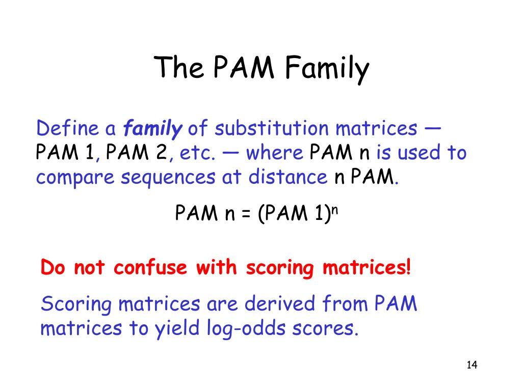 The PAM Family