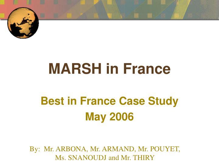 marsh in france n.