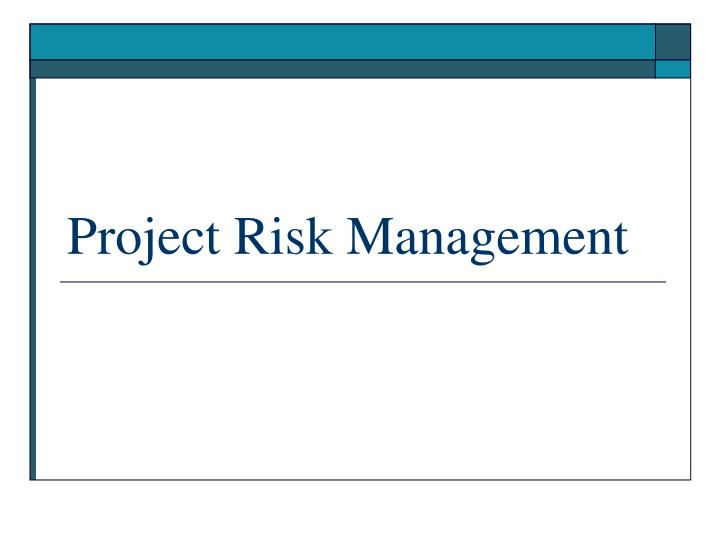 project risk management n.