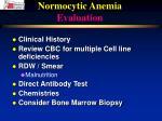 normocytic anemia evaluation