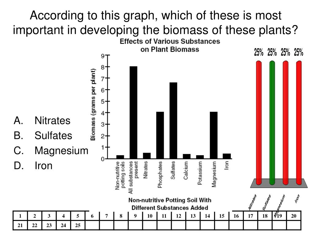 According to this graph, which of these is most important in developing the biomass of these plants?