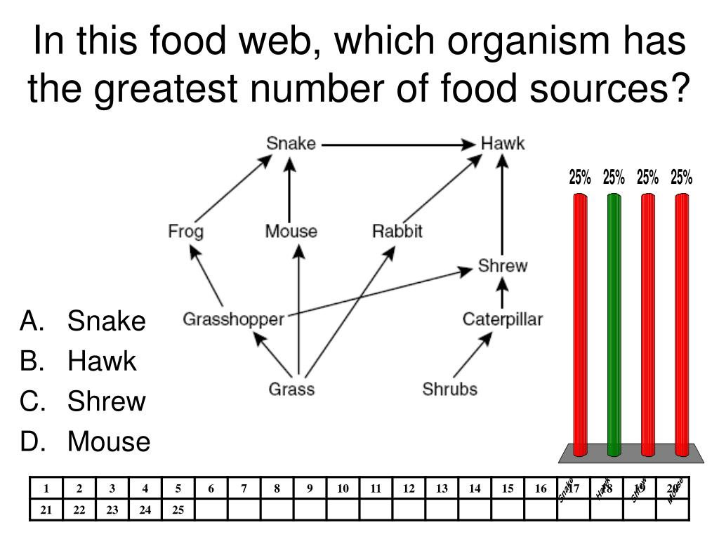 In this food web, which organism has
