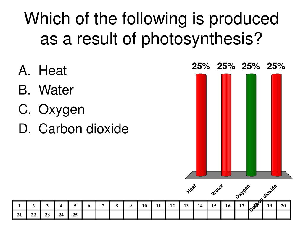 Which of the following is produced as a result of photosynthesis?
