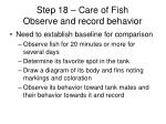 step 18 care of fish observe and record behavior