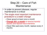 step 20 care of fish maintenance