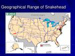 geographical range of snakehead