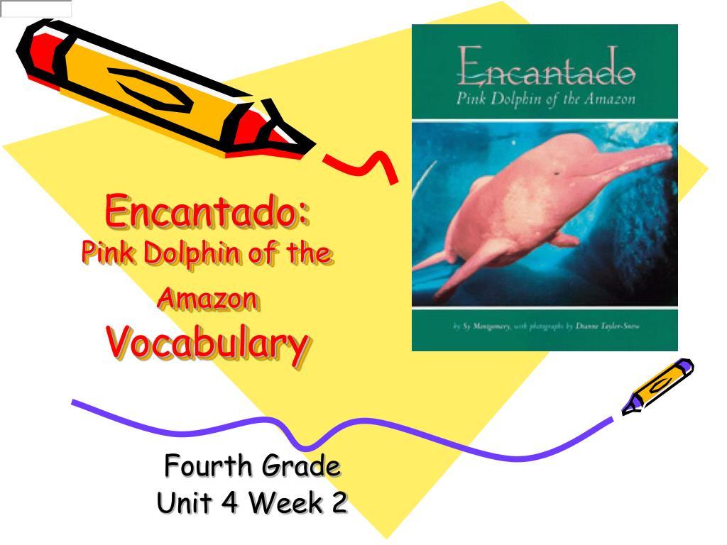 encantado pink dolphin of the amazon vocabulary l.