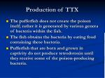 production of ttx