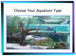 choose your aquarium type3