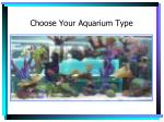 choose your aquarium type4