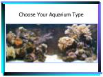 choose your aquarium type5