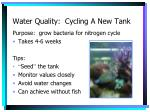 water quality cycling a new tank