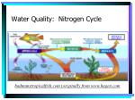 water quality nitrogen cycle