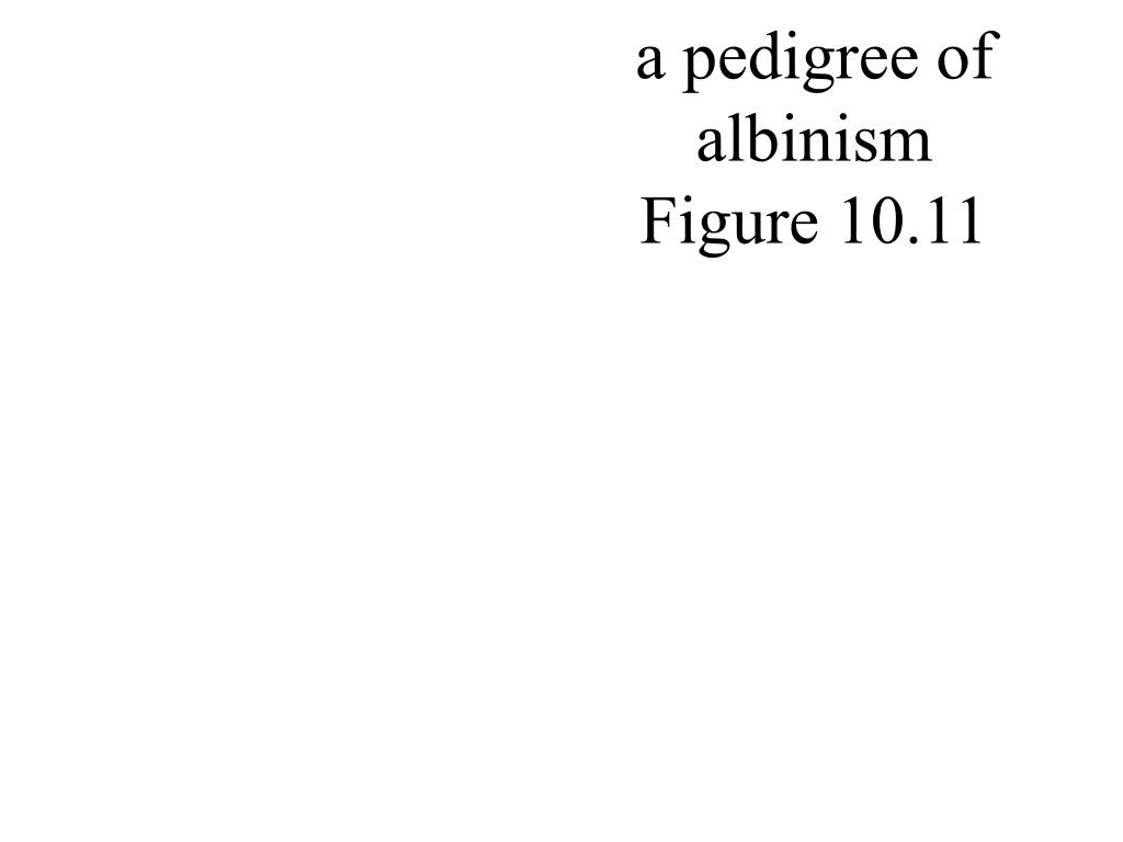 a pedigree of  albinism