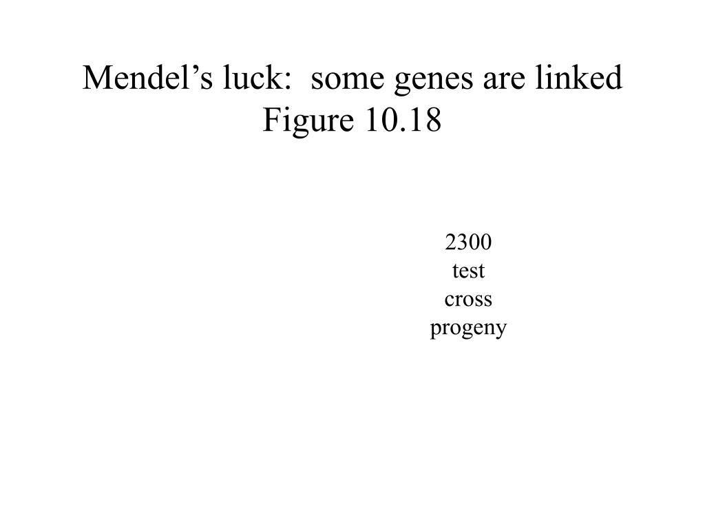 Mendel's luck:  some genes are linked