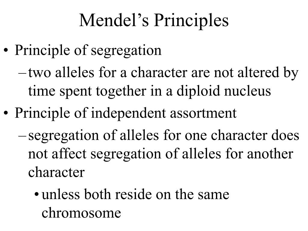 Mendel's Principles