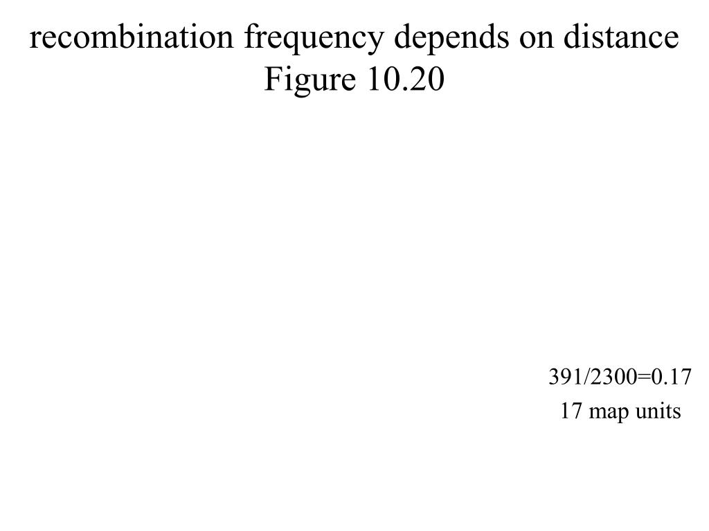 recombination frequency depends on distance
