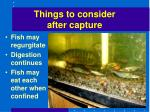 things to consider after capture