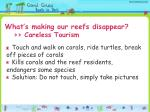 what s making our reefs disappear careless tourism