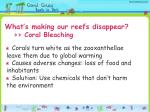 what s making our reefs disappear coral bleaching