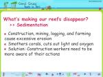 what s making our reefs disappear sedimentation