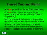 insured crop and plants14