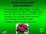 peak inventory endorsement