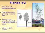 florida 236