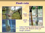 flush cuts