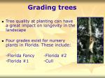 grading trees