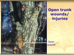 open trunk wounds injuries