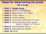 steps for determining the grade of a tree