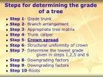 steps for determining the grade of a tree28