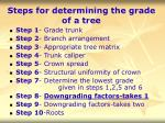 steps for determining the grade of a tree41