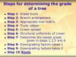 steps for determining the grade of a tree62