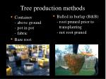 tree production methods