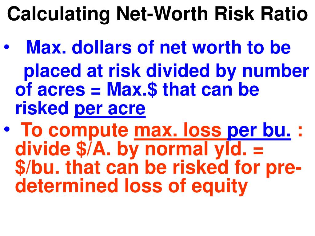 Calculating Net-Worth Risk Ratio