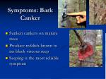 symptoms bark canker