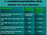 j scopulorum germination study national tree seed laboratory