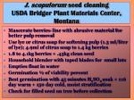 j scopulorum seed cleaning usda bridger plant materials center montana