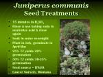 juniperus communis seed treatments