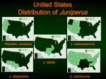united states distribution of juniperus3