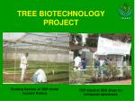 tree biotechnology project