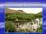 strategic site was found a shallow channel drained both deforested areas