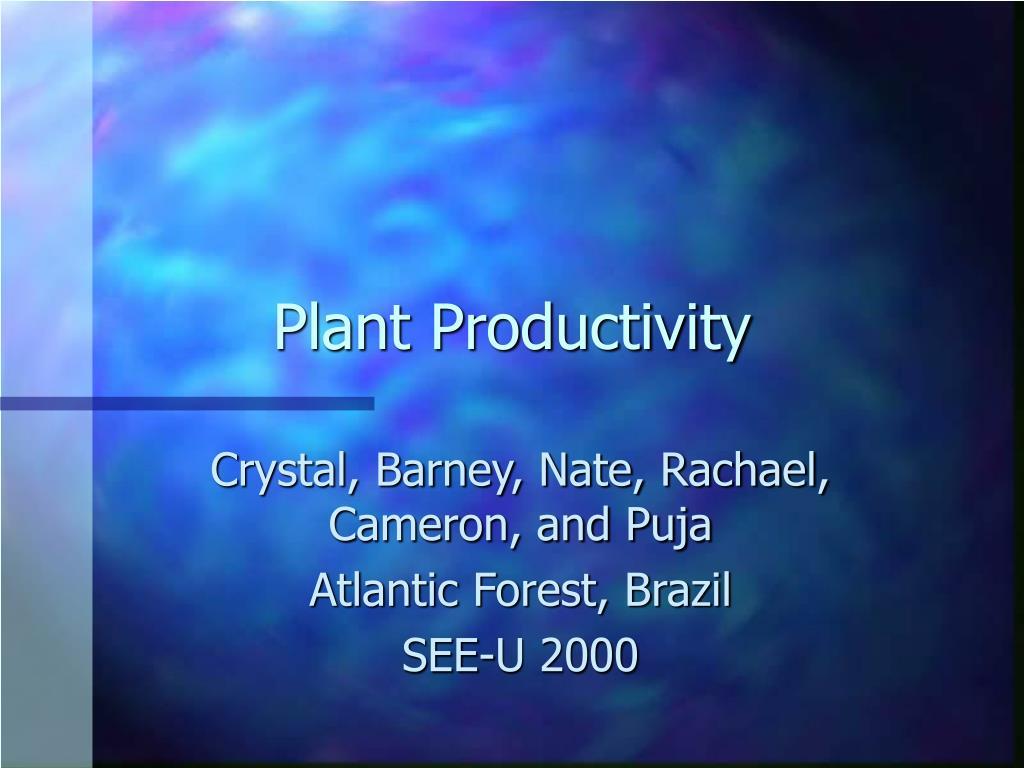 plant productivity l.