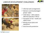 labour development challenges