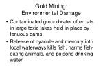gold mining environmental damage