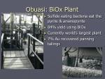 obuasi biox plant