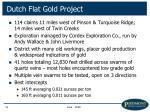 dutch flat gold project16
