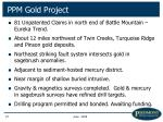 ppm gold project27